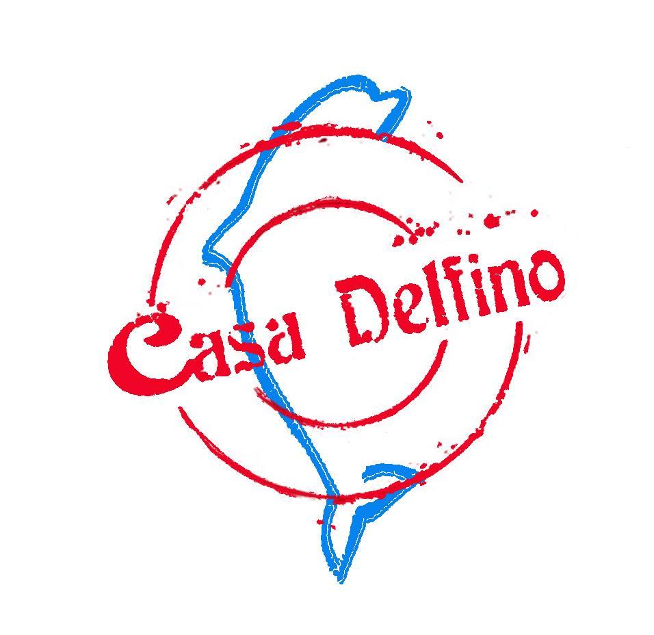 Il World Fest Fest è una realizzazione della Fondazione Casa Delfino