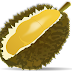 Cara Membuat Kolak Labu Durian