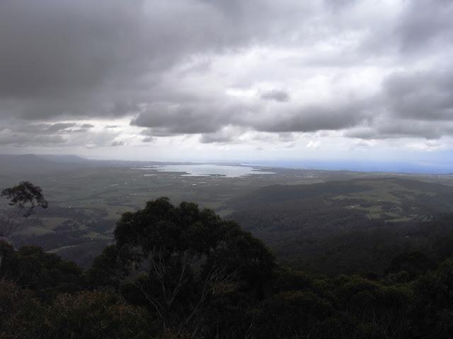 View to coast from IIlawarra Fly treetop Walk