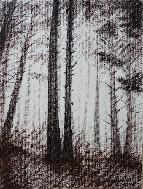 туман в лесу, туман