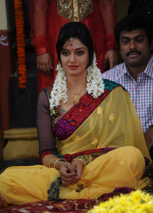 vimalaraman saree hq nowatermark latest photos