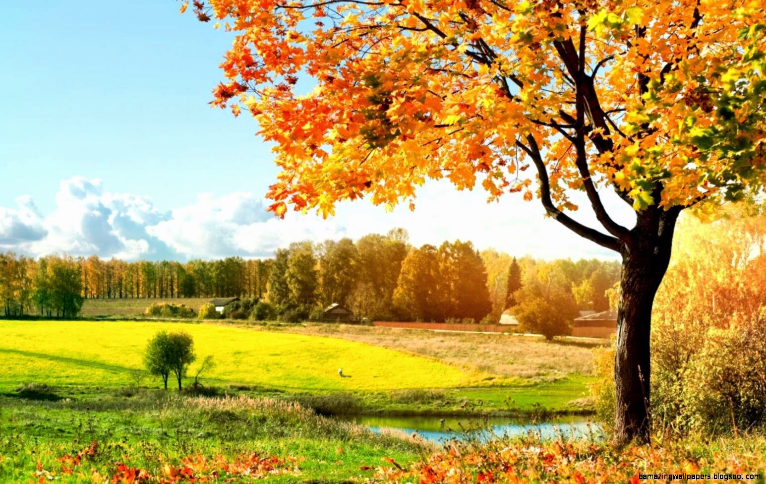 Autumn HD Wallpapers  HD Wallpapers