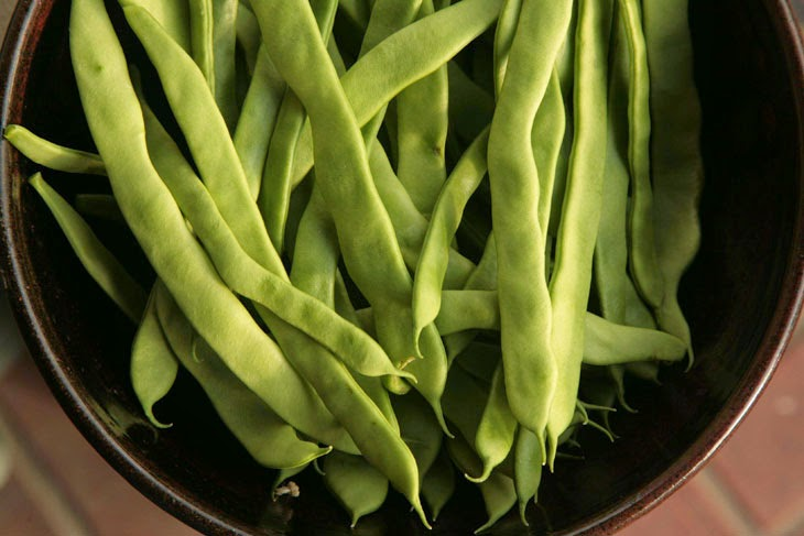 The green of these beans is perfect. - He Started With Some Boxes, 60 Days Later, The Neighbors Could Not Believe What He Built