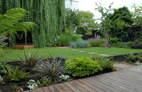 Dr dan 39 s garden tips happy new year for Low maintenance garden design pictures