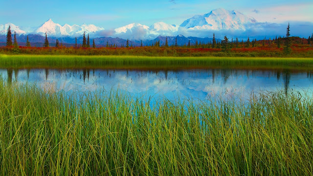 Denali National Park spring scenery lake mountains HD Wallpaper