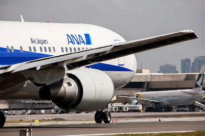 ana flights to manila