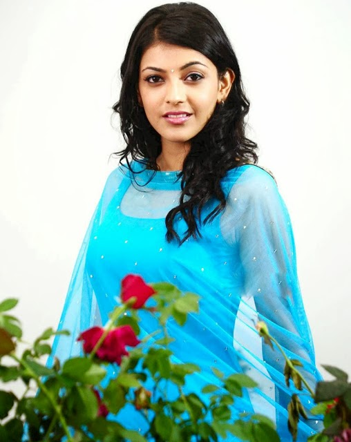 Kajal agarwal hot and sexy pics photos wallpapers images without dress