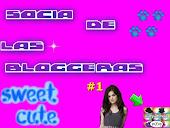 Carnet de socia de las+bloggeras