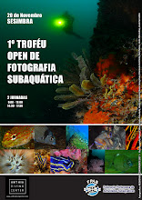 I TROFÉU OPEN DE FOTOGRAFIA SUBAQUATICA 2011