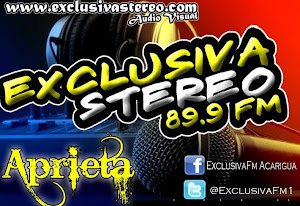 www.exclusivastereo.com