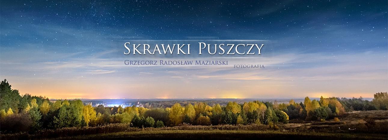 Skrawki Puszczy | Grzegorz Radosław Maziarski FOTOGRAFIA