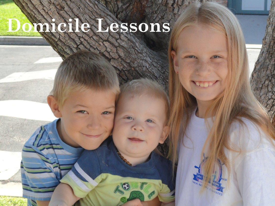 Domicile Lessons