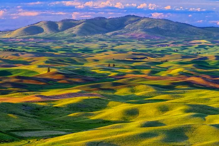 "Photographer Michael Brandt. ""This striking image was taken at a place called Steptoe Butte - amazing geographical attractions in the heart of Paluzy."