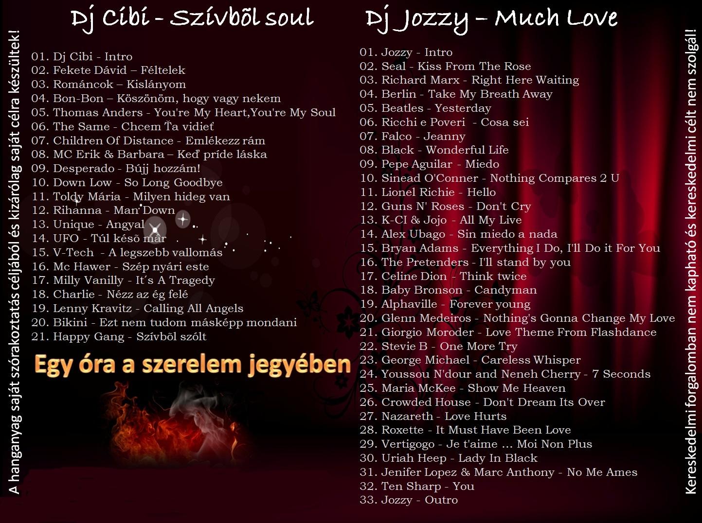 http://3.bp.blogspot.com/-ObGgiVczv1Q/TlkuLjrlTdI/AAAAAAAAXwc/casaOuRms4Q/s1600/Dj+Cibi+vs+Dj+Jozzy+-+The+Ladies+Favorites+-+Cover+back.jpg