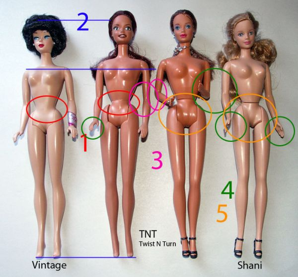 measuring up to barbie ideals of the feminine body Deviant bodies critical perspectives on difference in science and popular culture (1995) jacqueline urla, university of massachusetts - amherst bloomingtondeviant bodies critical perspectives on difference in science and popular culture (1995) available at: http.