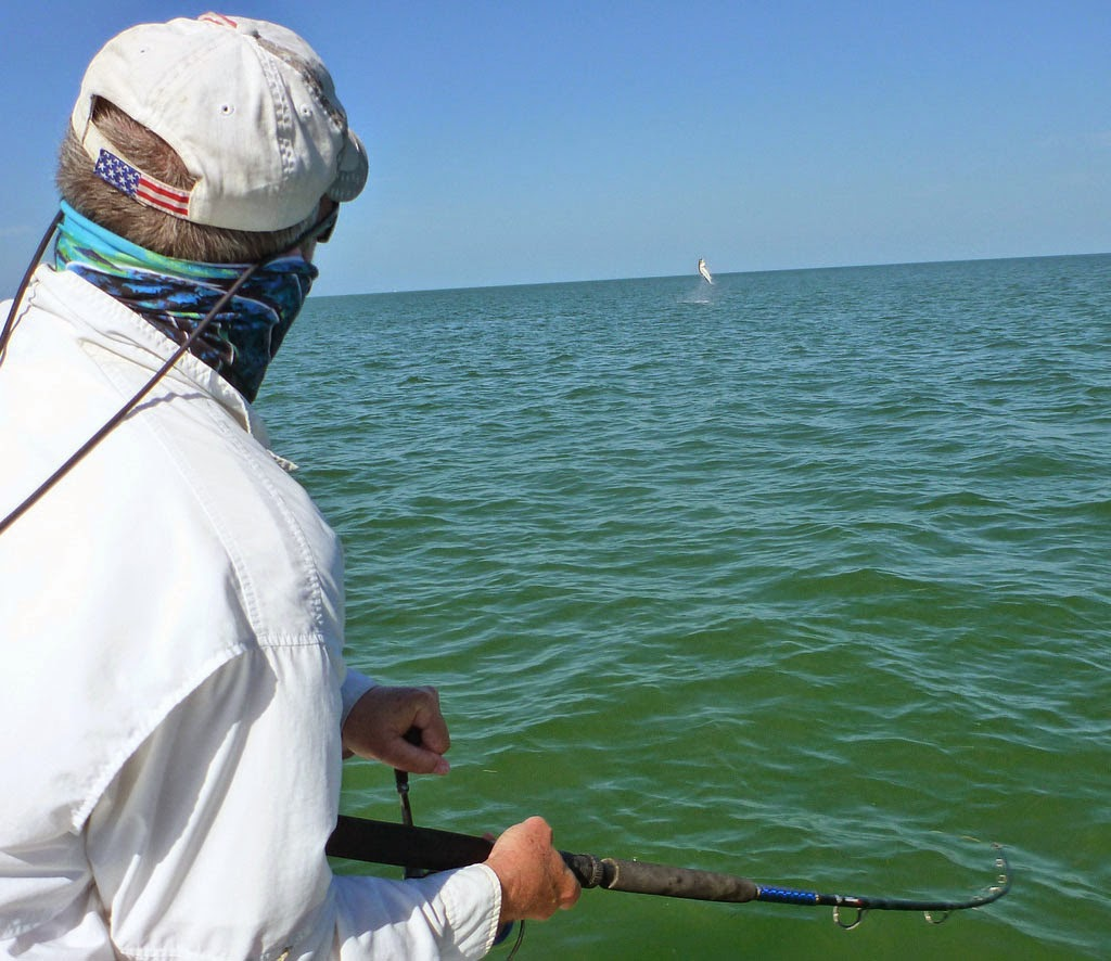 Captain skip 39 s fox sport fishing blog decent week of for Tarpon fly fishing