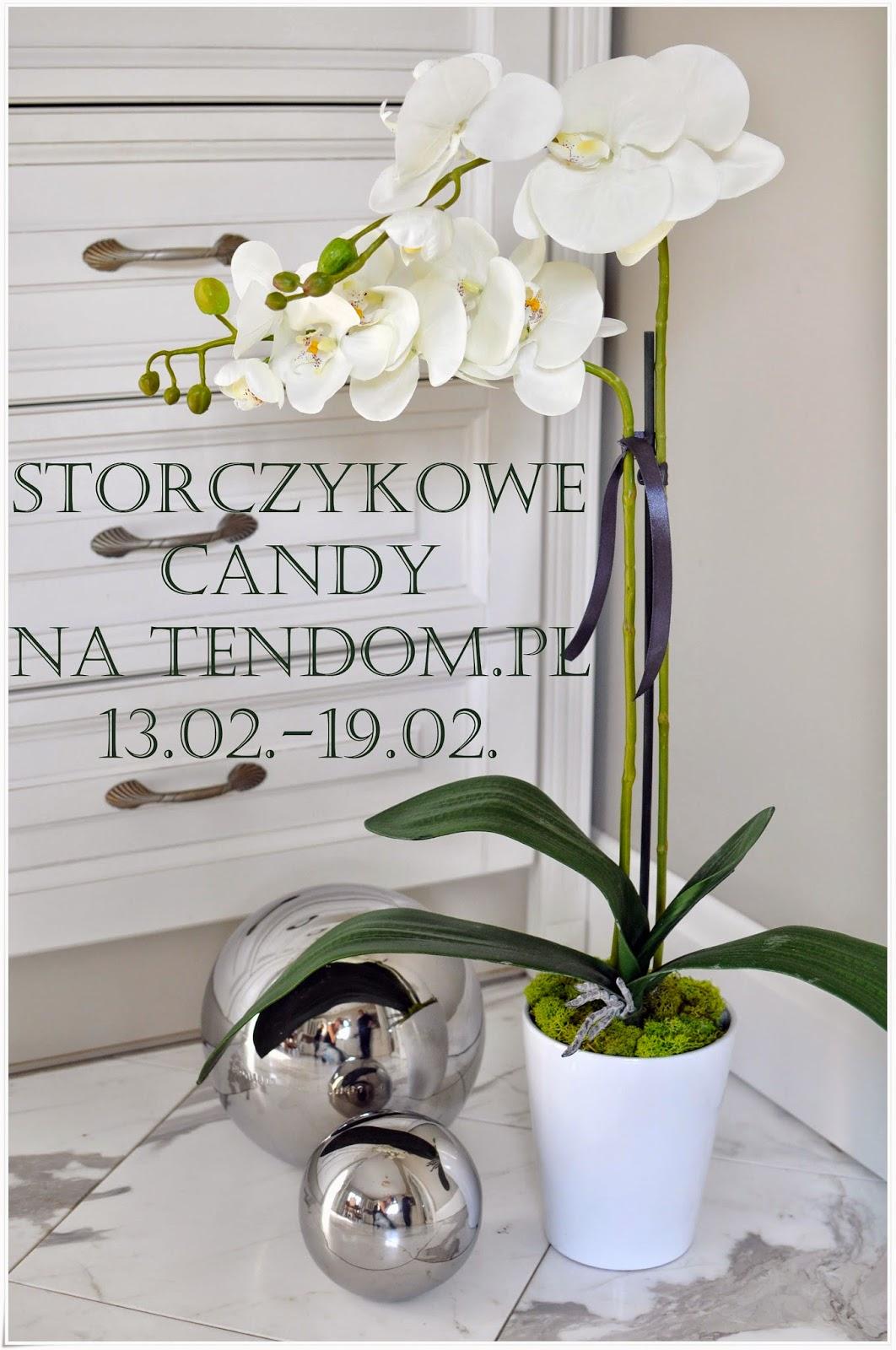 Storczykowe Candy z tendom.pl