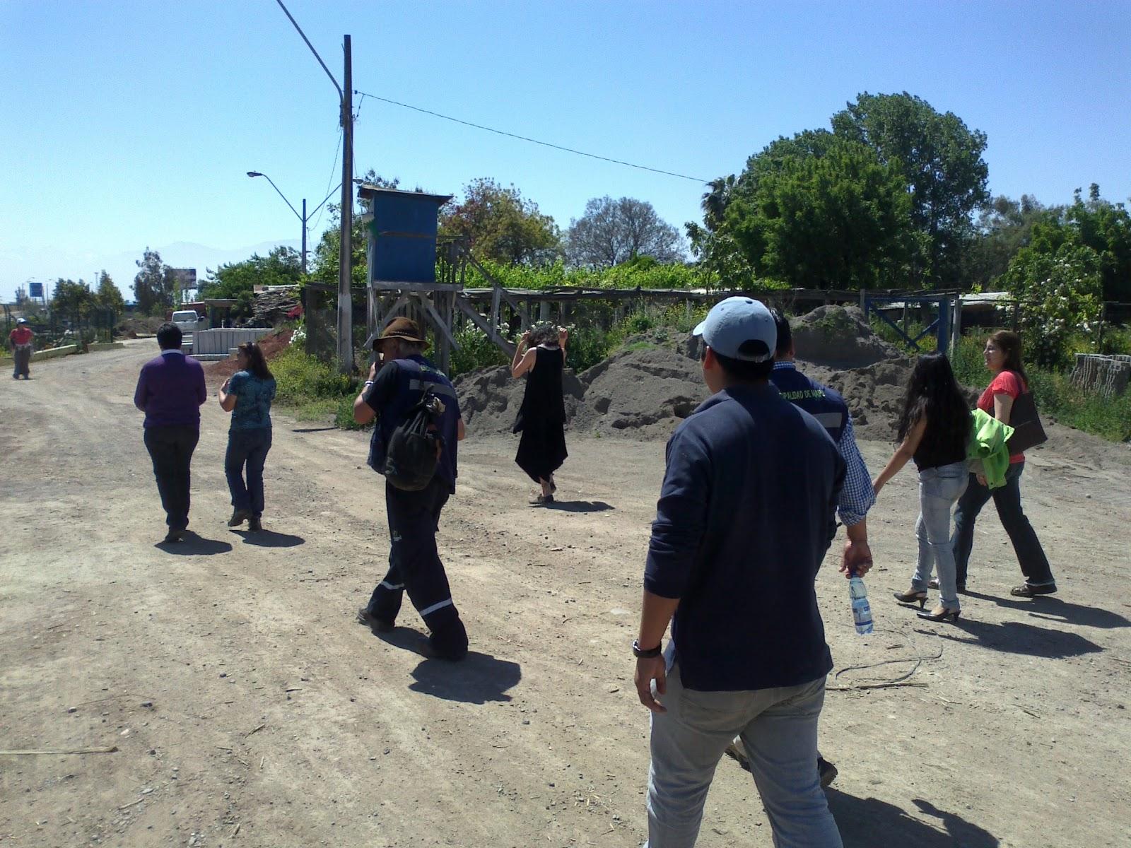 Unidad de educaci n ambiental for Viveros en maipu