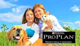 Purina ProPlan está en PurAnimals Maipú