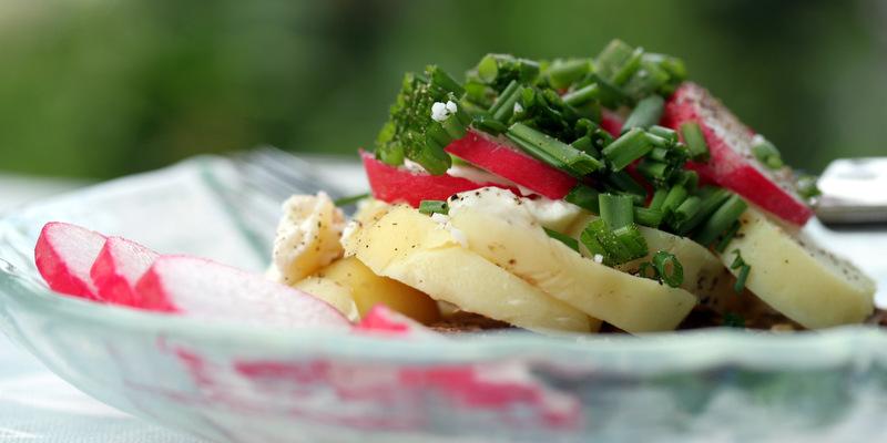 aspargeskartoffel, kartoffel