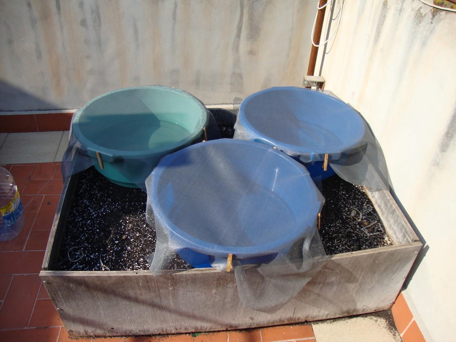 Ciencia inventos y experimentos en casa matamosquitos - Mosquitera casera ...
