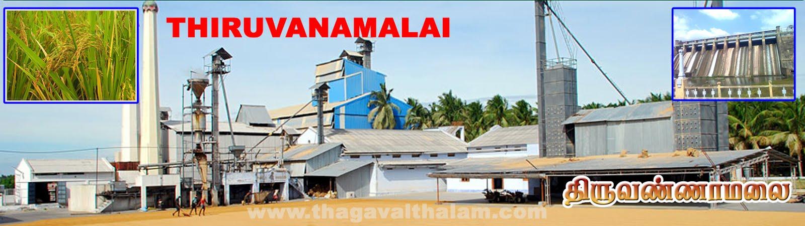 திருவண்ணாமலை Tiruvannamalai