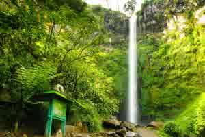 Wisata Malang Coban Rondo