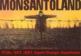 Aspartame Danger exposed - Monsanto Genetically Modified GM Bacteria used to create deadly sweetener