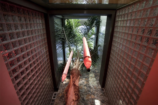 Picture of tall entrance hallway with palm tree