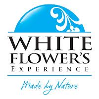 http://www.whiteflower.com.pl/pl/produkty/
