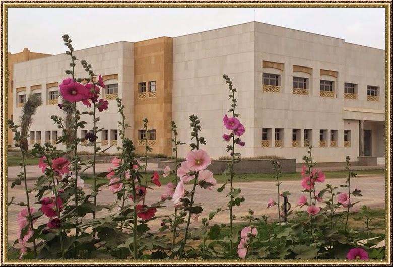 تعلن كليات البيان فتح باب التقديم على منح وزارة التعليم العالي في مختلف التخصصات