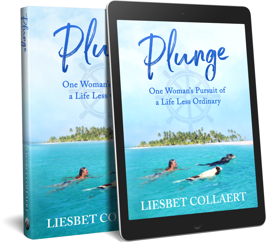 "Buy My Sailing Memoir ""Plunge"" Now!"