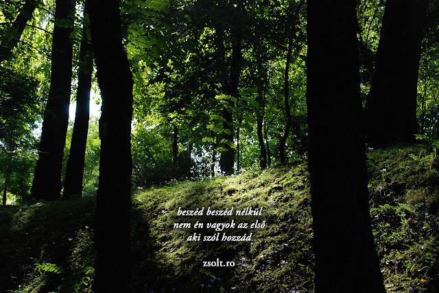 csend, lélekzet-szútra, lélekzet, Sütő Zsolt, fotó, vers, verskép, zen, meditáció, coaching