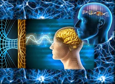 Ascensão Pleiadiana – Recalibrar o Cérebro para a Mente Multidimensional