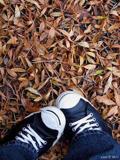 autumn converse