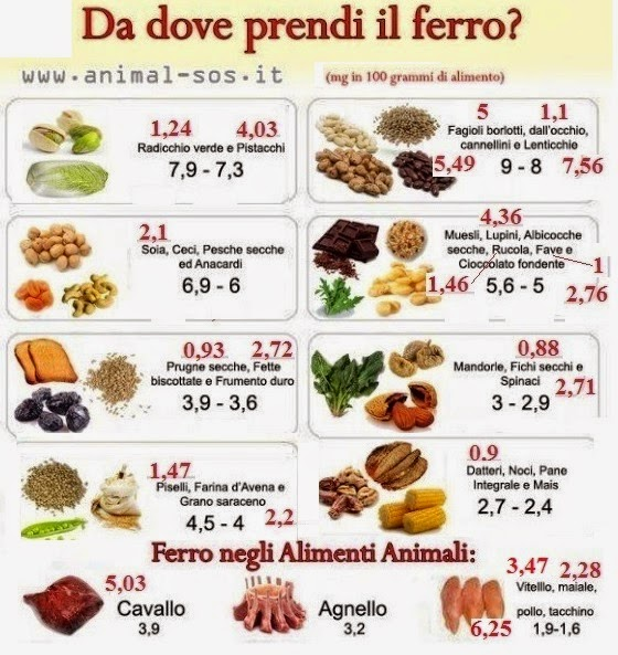 Favori GenBioAgroNutrition: L'inganno della dieta vegana EN42