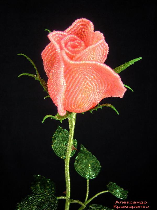 Бокаловидная роза мастер класс 192