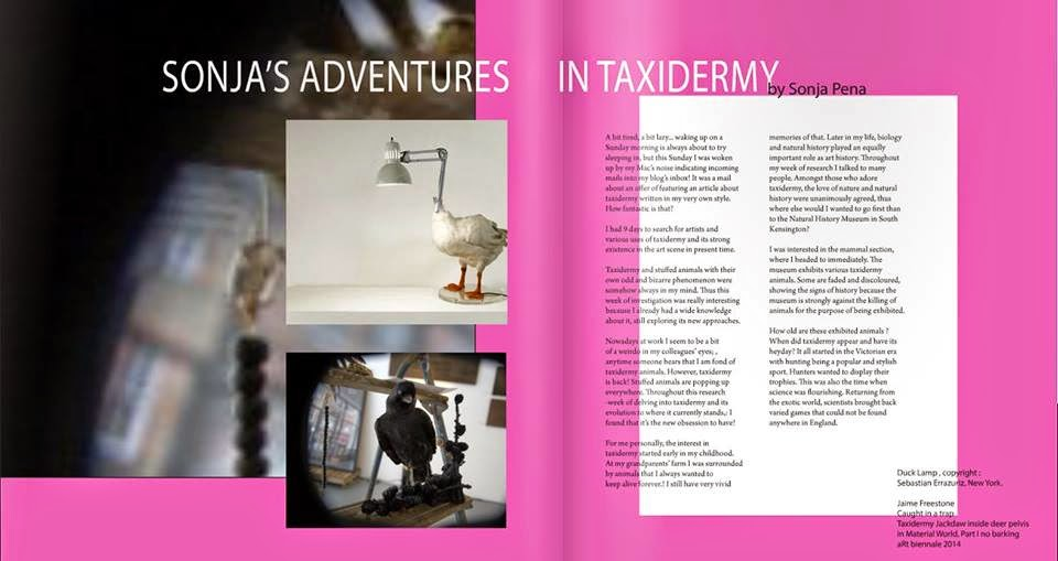 Sonja's adventures in Taxidermy article and photos