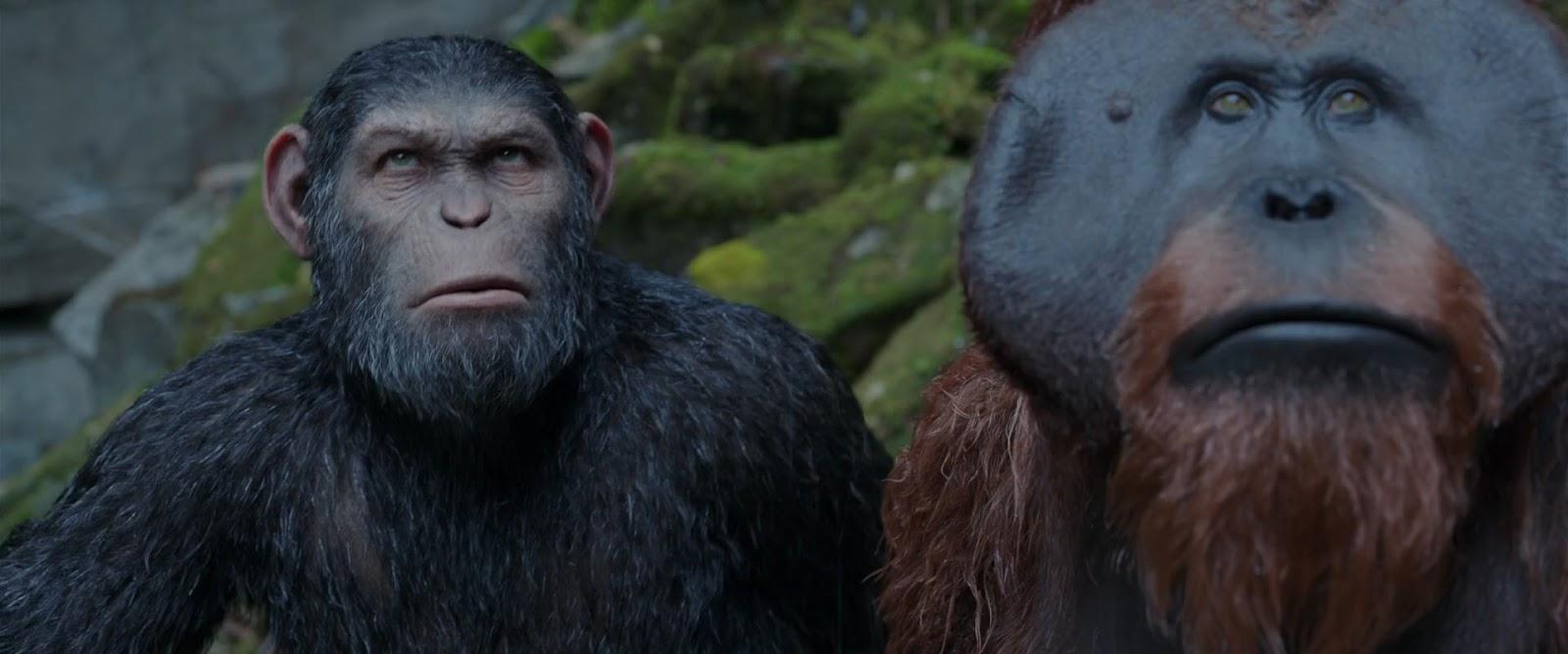 El planeta de los simios: La guerra | 2017 | 1080 | Latino