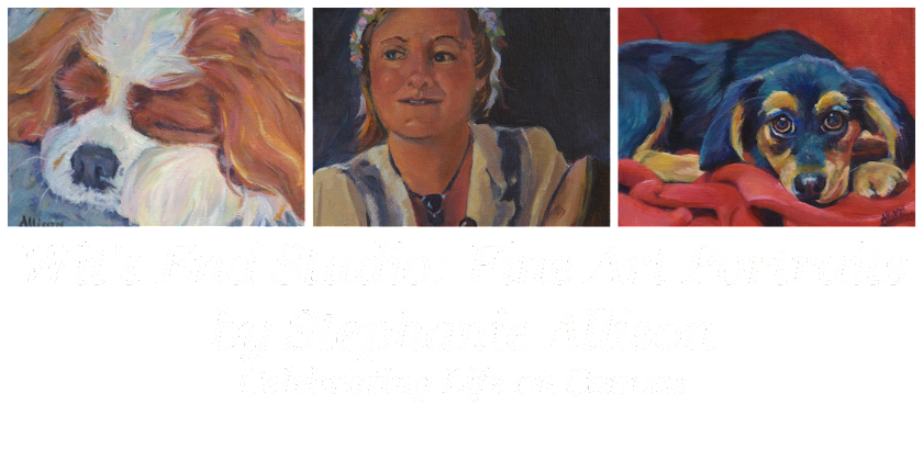 Stephanie Allison Portraits: Celebrating Life on Canvas