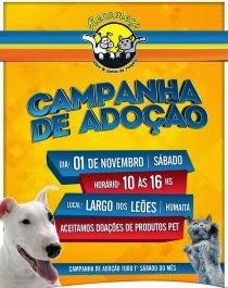 Campanha de Adoção no Largo dos Leões - Todo 1o Sábado do mês.