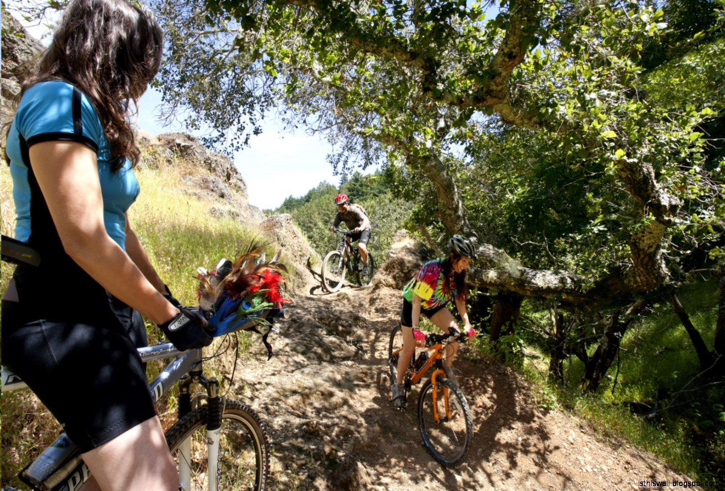 Mountain Bike Trails Marin County