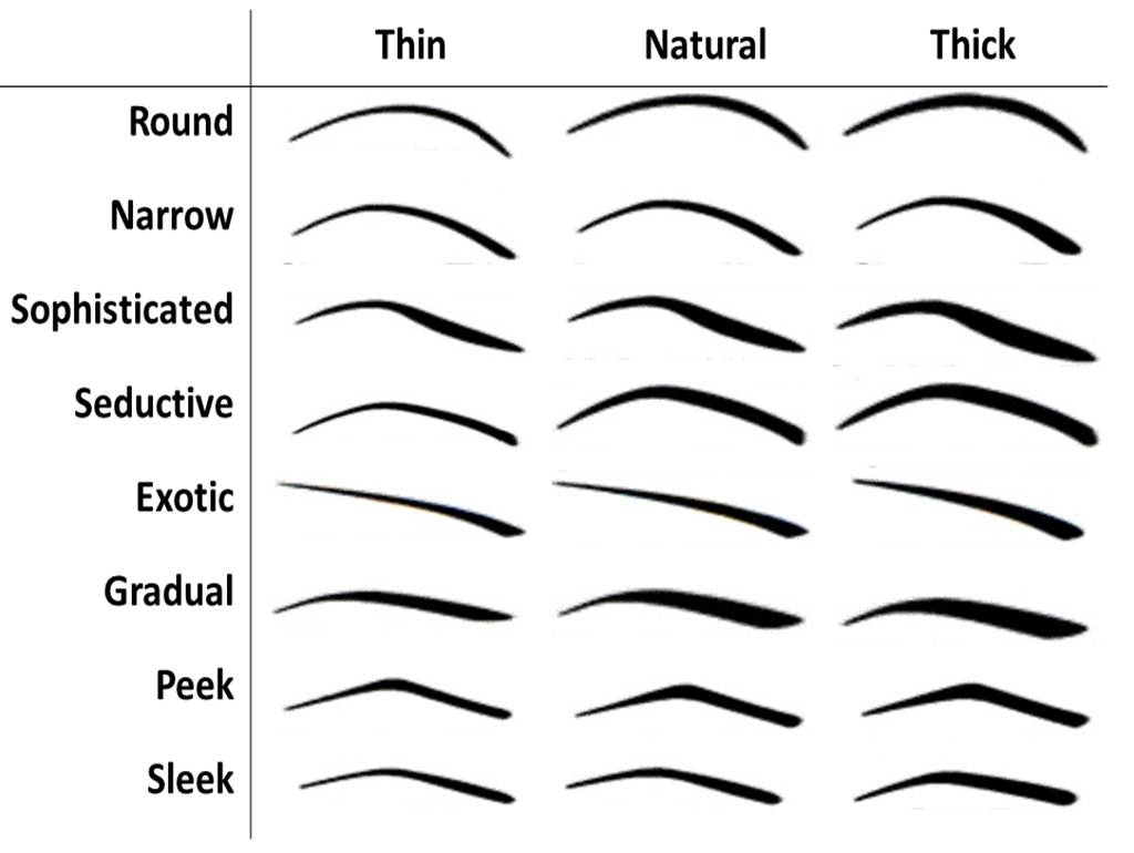 Thick Eyebrow Shapes Chart The chart illustrates how the