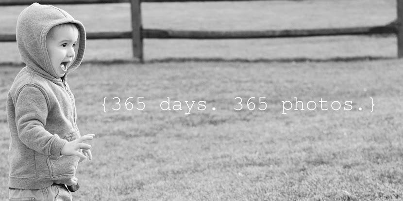 365 Days. 365 Photos.