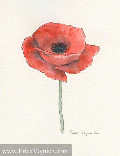 Red Poppy Watercolor