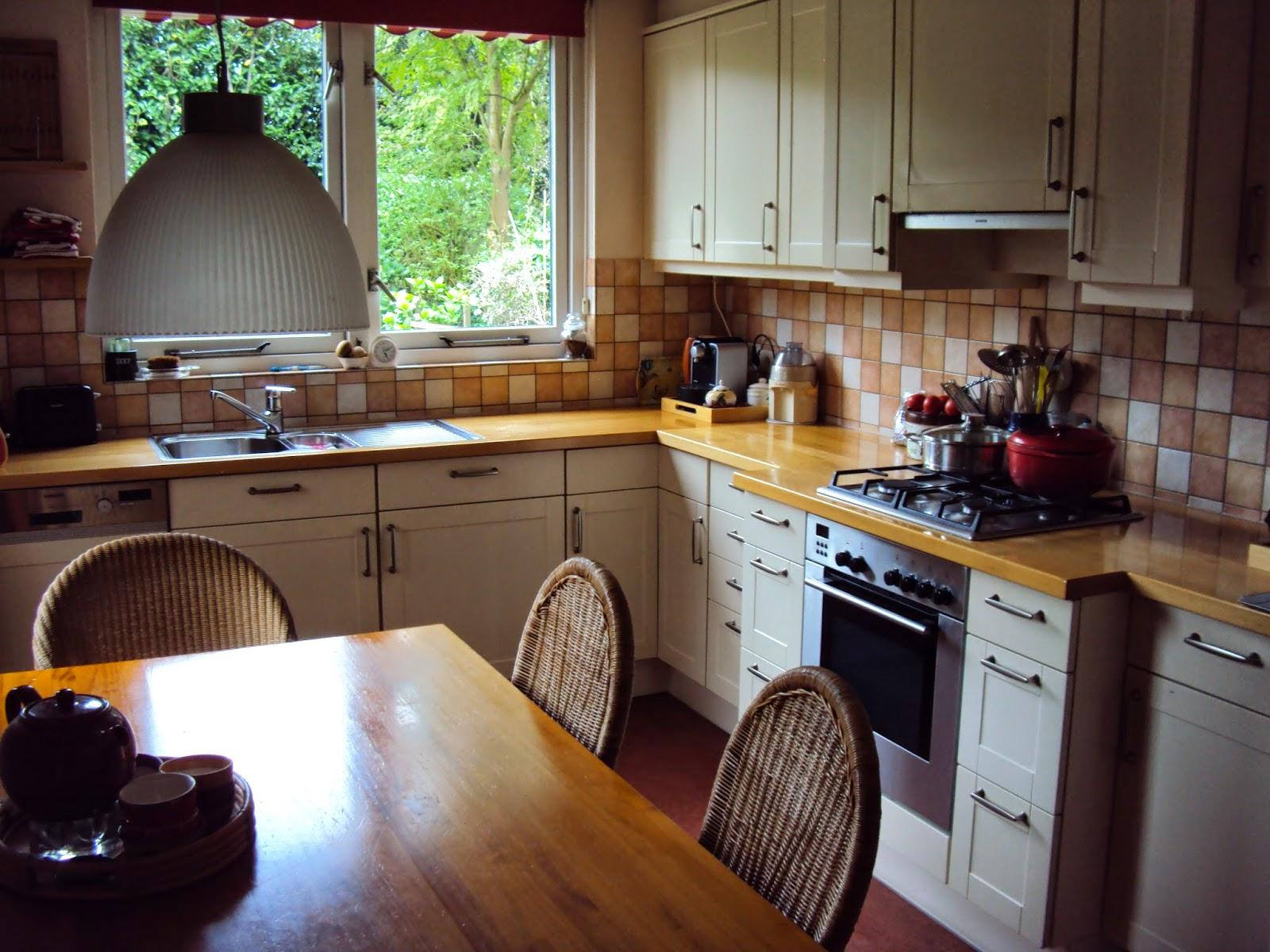 Moesker 39 s moestuin mieren fruitvliegjes en konijnen for Fruitvliegjes in keuken