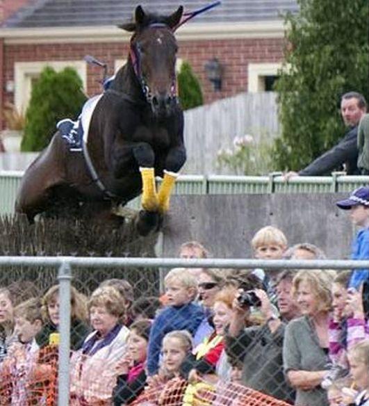 caballo fail