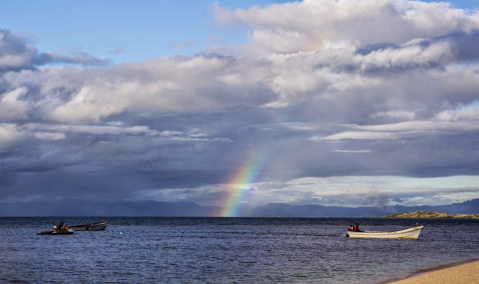 no competition fiji pro 2014 rainbow