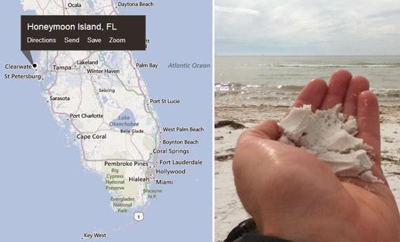 Honeymoon Island, Florida USA