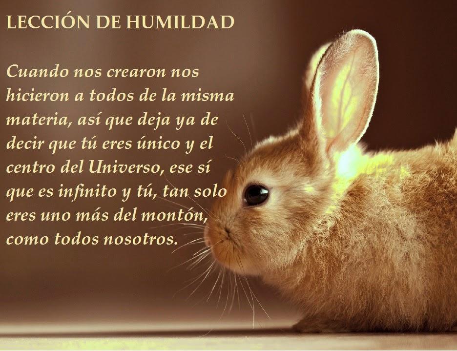 El Blog de María Serralba - #Humildad